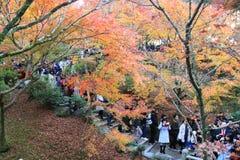Tofukuji Temple : KYOTO - 25 Nov 2017: Crowds gather at Tofukuj royalty free stock photography