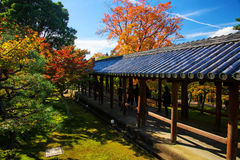 Tofukuji temple, walk trail with fall foliage royalty free stock image