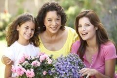 Tog de jardinagem da família de 3 gerações Imagem de Stock Royalty Free