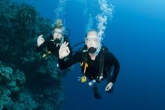 Togeather de la zambullida del equipo de submarinismo del hombre y de la mujer Fotografía de archivo