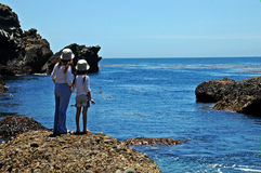 Together Always. Pt Lobos, Calif stock photography