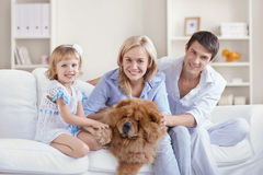 Together with pets Stock Photo