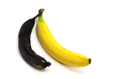 Together rotten and ripe bananas Stock Photo
