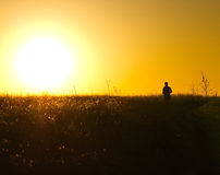 Together with the sun. Girl runs across the field at sunset Royalty Free Stock Photos