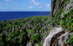 Togo Chasm, Niue. Alien landscape: Elevated coral pinnacles at Togo Chasm, Niue - thrust up from under the waves in a tectonic event thousands of years ago Royalty Free Stock Photo