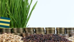 Togo flag waving with stack of money coins and piles of wheat. And rice seeds stock footage