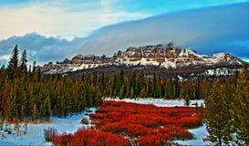 Togwotee passerandeAbsaroka berg i Wyoming Arkivbild
