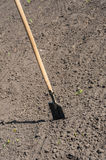 Toil work of ground. spade insert soil Stock Photography