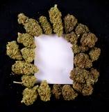 Toile blanche encadrée par les bourgeons secs de cannabis Image libre de droits