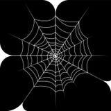 Toile d'araignée Photo libre de droits