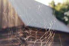 Toile d'araignée dans le rural photos stock