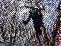 Toile d'araignée parmi les arbres Photo libre de droits