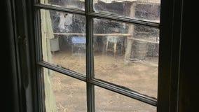 Toile d'araignée sur la fenêtre clips vidéos