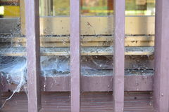 Toile d'araignée sur un cadre en bois image libre de droits
