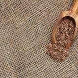 Toile de jute avec des graines de lin Photos stock