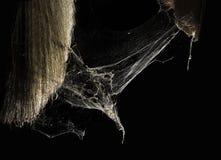 Toile de toile d'araignée ou d'araignée dans la maison thaïlandaise antique d'isolement sur le fond noir Images libres de droits