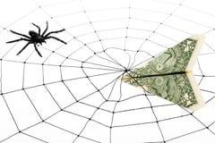 Toile et dollar d'araignée Photos libres de droits