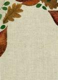 Toile inférieure avec la décoration des lames d'automne Image stock