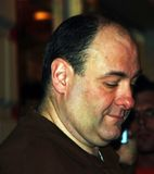 Étoile James Gandolfini de sopranos Photographie stock libre de droits