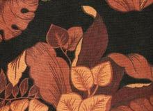 Toile noire avec le feuillage brun et orange photographie stock