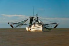 Toiler моря Стоковая Фотография RF
