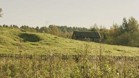 Toiles d'araignée sur l'herbe sur un fond des maisons rurales banque de vidéos