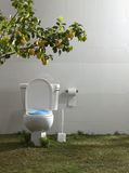 Toilet Royalty Free Stock Image