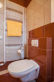 Toilet. Wc in brown and creamy bathroom, vertical view Royalty Free Stock Photography