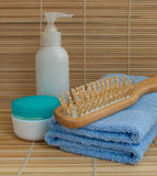 Toilet accessories Royalty Free Stock Images