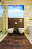 Toilet and bidet Royalty Free Stock Photos
