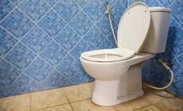 Toilet bowl aginst blue wall Royalty Free Stock Photo