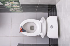 Toilet bowl directly above Stock Photo