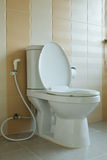 Toilet bowl in house design Stock Image