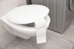 Toilet bowl with paper roll. In bathroom stock photos
