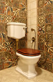Toilet bowl. White toilet bowl with a brown cover against a motley ceramic tile Royalty Free Stock Photo