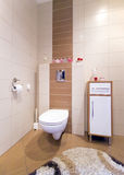 Toilet corner. Bathroom inside, toilet detail, brown and beige tiles Royalty Free Stock Photography