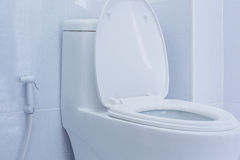 Toilet. Flush cleaning water bathroom Royalty Free Stock Photo