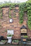 Toilet Garden planter against a brick wall. With a toilet mirror stock photo