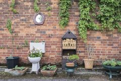 Toilet Garden planter against a brick wall. With a toilet mirror royalty free stock images