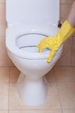 Toilet hygiene concept Stock Photography