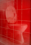 Toilet mirror image. On the tile Royalty Free Stock Photography