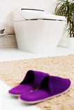 Toilet & pantoffels Stock Foto