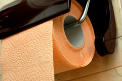 Toilet paper. And brown paper holder Royalty Free Stock Images