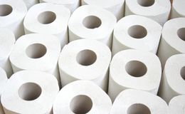 Toilet paper. Some toilet paper-roll without background Stock Image