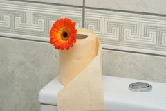 Toilet paper Stock Photos