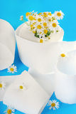 Toilet paper with camomile Stock Images