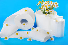 Toilet paper with camomile Royalty Free Stock Photos