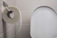 Toilet paper hanging on the wall. In the background toilet bowl out of focus. The room is white Stock Image