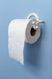 Toilet paper on holder Stock Image