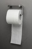 Toilet paper on a holder Stock Image
